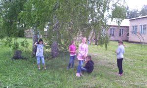 Здоровое лето3