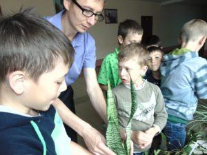 Пересадка комнатных растений (5)
